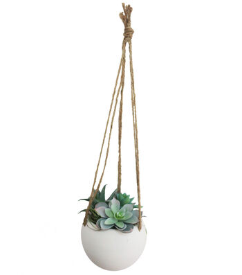 Fresh Picked Spring Succulents in Hanging Pot-Icy Blue & Green