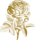 Couture Creations Anna Griffin Hotfoil Plate-Classic Rose