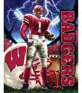 University of Wisconsin-Madison Badgers Fleece Fabric Panel 60\u0022