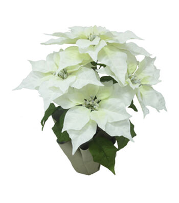 Blooming Holiday Christmas 18.5'' Poinsettia in Pot-White