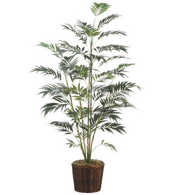 Bloom Room Luxe 7' Bamboo Palm In Basket-Green