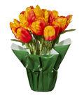 Spring Floral Tulip In Pot Orange