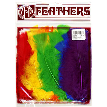 Turkey Flat Feathers 36/Pkg-Rainbow