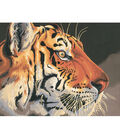 Dimensions Paint By Number Kit Regal Tiger