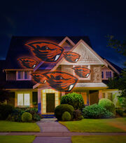 Oregon State University Team Pride Light Projector, , hi-res