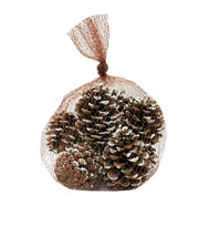 Blooming Holiday 9 pk Medium Pinecone with Snow in Mesh Bag, , hi-res