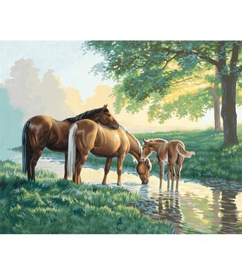 "Paint By Number Kit 20""X16""-Horses By A Stream"