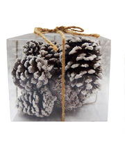 Blooming Holiday White Pinecones In Box, , hi-res
