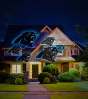Carolina Panthers Team Pride Light, , hi-res