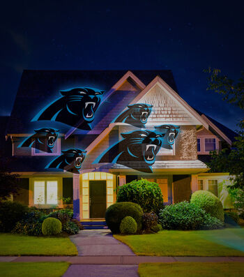 Carolina Panthers Team Pride Light