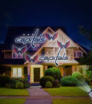 Washington Capitals Team Pride Light, , hi-res