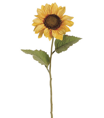 Bloom Room Pack of 12 24'' Sunflower Stems-Yellow