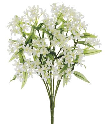 "Bloom Room 15"" Star Jasmine Bush x14-White"