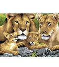 15-1/4\u0022x11-1/4\u0022 Junior Paint By Number Kit-Pride Of Lions