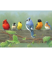 "Reeves Paint By Number Artist's Collection 12""X16-Rail Birds, , hi-res"