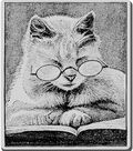 Stampendous Cling Rubber Stamp-Cattus Librum