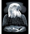 Reeves Scraperfoil Kit 8\u0022X10-Bald Eagle