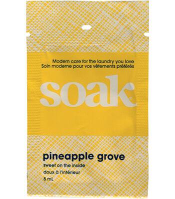Soak Single Use Sample 5ml-Pineapple Grove