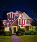 University of Indiana Hoosiers Team Pride Light