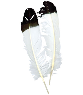 Zucker Imitation Eagle Quill 2/Pkg-White With Black Tip