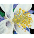 Thea Gouverneur Columbine On Aida Counted Cross Stitch Kit