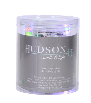Hudson 43 50 ct LED String Lights-Multicolor with Silver Wire