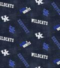 University of Kentucky Wildcats Flannel Fabric 42\u0022-Dsitressed Logo