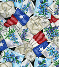 Texas Flag And Blue Bonnets