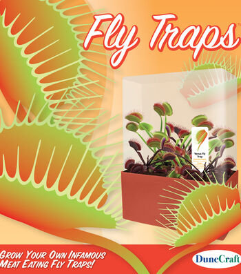 Fly Trap Garden Plant Cube