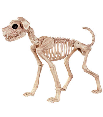 The Boneyard Halloween 21'' Skeleton Buster Dog