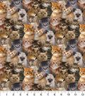 Novelty Cotton Fabric 43\u0022-Photo Real Packed Cats