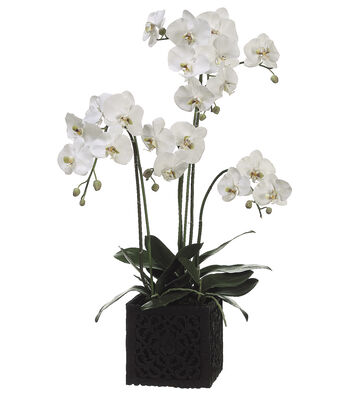 Bloom Room Luxe 37'' Orchid Plant In Polyresin Container-Green