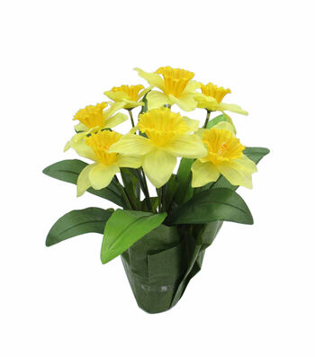 Blooming Spring 16'' Potted Daffodil-Yellow