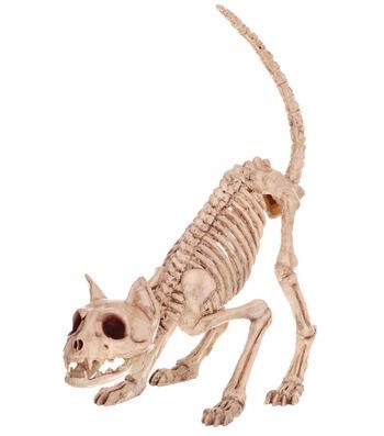 The Boneyard Halloween Skeleton Kitty