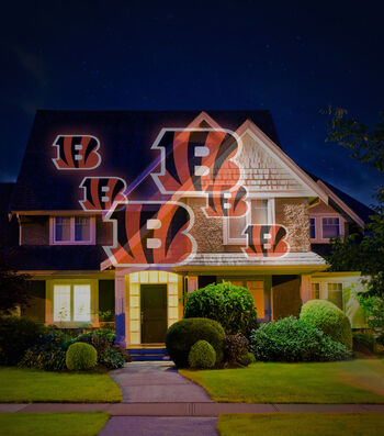 Cincinnati Bengals Team Pride Light