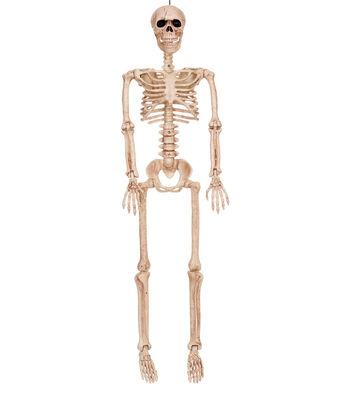 The Boneyard Halloween 36'' Posable Skeleton