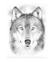 "Sketching By Number Kit 8""X11-3/4""-Wolf, , hi-res"