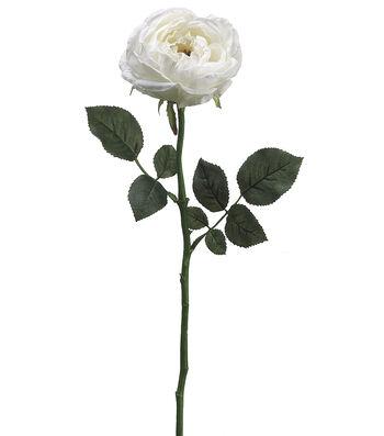 "Bloom Room 23"" Garden Cabbage Rose Stem-Cream"