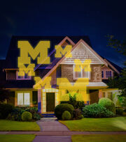 University of Michigan Wolverines Team Pride Light, , hi-res