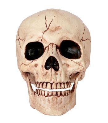 The Boneyard Halloween Medium Skull with Movable Jaw