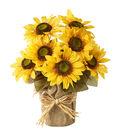 Blooming Autumn 13\u0027\u0027 Sunflower Potted-Yellow