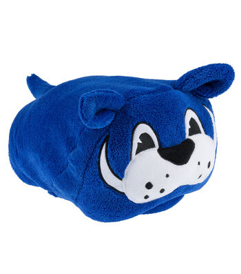 University of Kentucky Wildcats Hooded Blanket