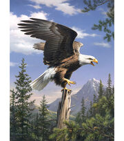 "Reeves Paint By Number Artist Collection 9""X12-Screaming Eagle, , hi-res"