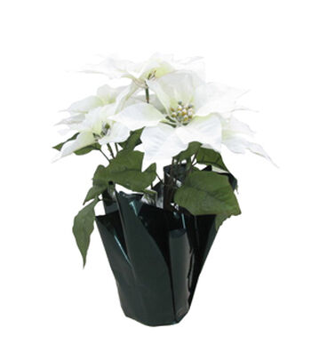 Blooming Holiday Christmas 16'' Poinsettia in Pot-White