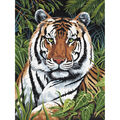 Royal Brush Junior Small Paint By Number Kit Tiger In Hiding