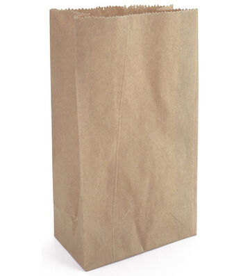 "Darice Big Value 4-5/8""x8-1/2"" Paper Bags-40PK"