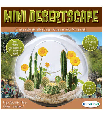 Glass Terrarium - Mini Desert Scape