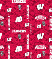 "University of Wisconsin Badgers Fleece Fabric 43""-Digital, , hi-res"