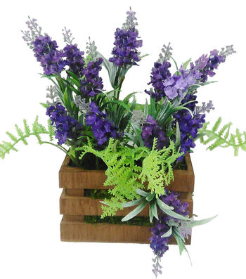 Blooming Spring 12'' Lavender In Crate with Moss