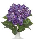 Bloom Room 22\u0027\u0027 Hydrangea Bush-Dark Purple